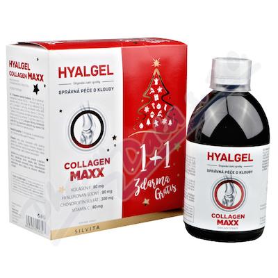 Hyalgel Collagen MAXX vánoční balení 2021 2x500ml